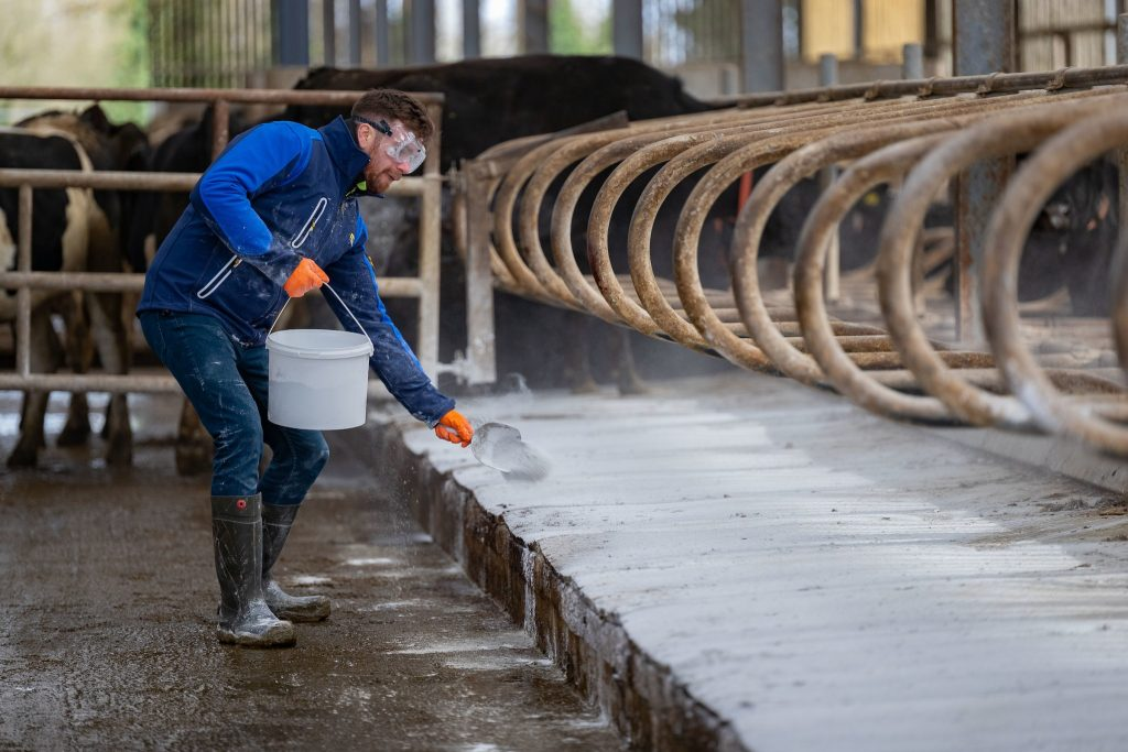 Farmer applying hydrated cubicle lime