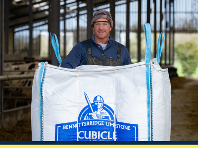 Farmer using cubicle lime to prevent mastitis
