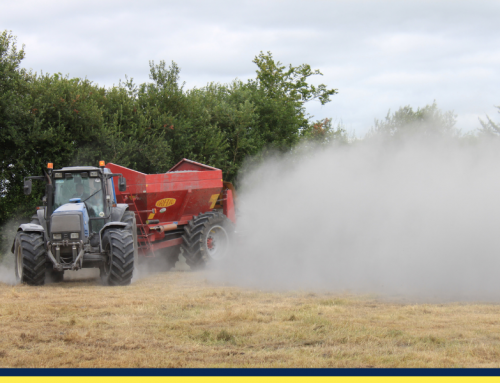 How lime application improves grassland productivity