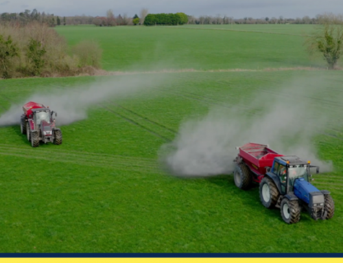 Agri lime – An essential ingredient for soil productivity